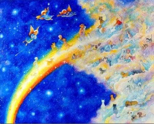 Семинар «МНОГОМЕРНЫЙ ЧЕЛОВЕК» из серии «Радужный мост Владивосток-Москва» 18-19 мая 2018 года в г. Москве